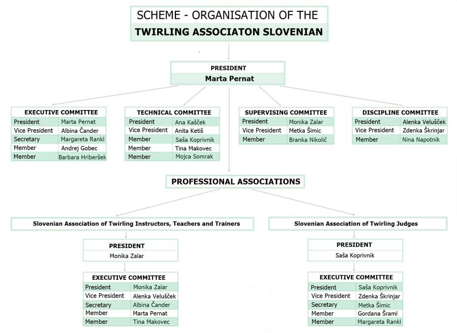 Organizacija-TZS---ang